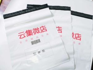 Custom Plastic Mailer Envelope Express Delivery Post Bag with Logo Printed pictures & photos