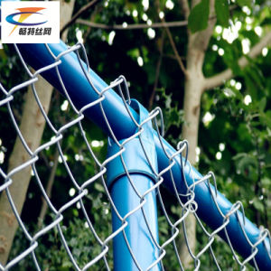 Hot! PVC Coat Chain Link Fencing (China factory) pictures & photos