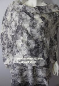 Cashmere Silk Print Airy Shawl pictures & photos