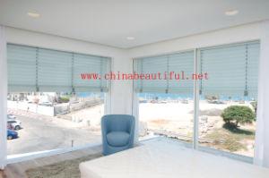 Aluminum Shutters Windows (pH-018) pictures & photos