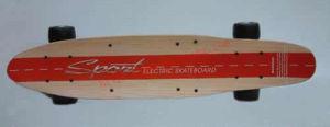 Remote Control Skateboard / Electric Skateboard (RC36V-600C)