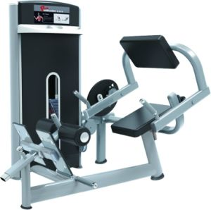 Strength Machine Back Extension Commercial Fitness/Gym Equipment pictures & photos