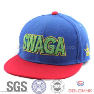 Good Quality and Fashion Colors Snapback Cap (GKA13-E00002) pictures & photos