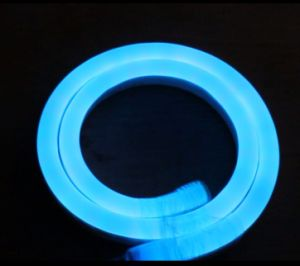 CE EMC LVD RoHS Two Years Warranty, LED Flex Neon Rope Light pictures & photos