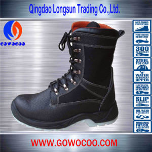 Comfortable Double Density PU Safety Shoes/Work Boots