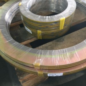 Best Price Spiral Wound Gasket with High Quality pictures & photos