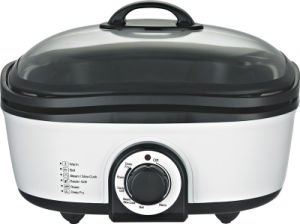 Multi Function Cooker (MT-01-4)