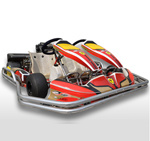 200cc Double Seat Hire Kart/Rental Kart for Teaching Usage