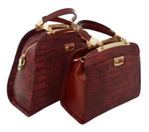 Hot Sell Ladies Tote Handbags (345B)