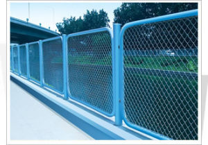 Security Powder Coated Wire Mesh Fencing