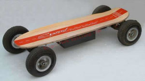 Remote Control Skateboard / Electric Skateboard (RC36V-800B)