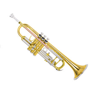 High Grade Trumpet (TR-460) pictures & photos