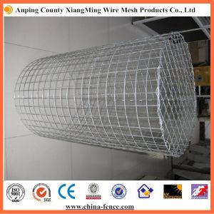 Welded Gabion Basket / Welded Gabion Box for Sale pictures & photos