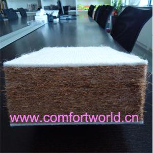 Coconut Palm Fiber Mattress (SHFJ02570) pictures & photos