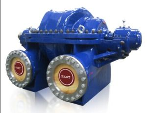 Electrical Centrifugal Double Suction Water Pump with CE Certificate pictures & photos