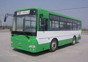 Bus and Bus Chassis (SLG6900T3GFR)