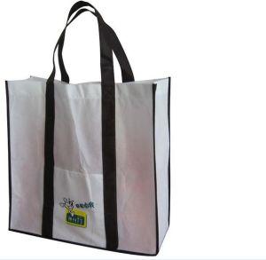 PP Woven Shopping Bag (CP1069)