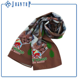 Infinity Scarves Fanmous Brand Hight Quanlity 100 Women′s Silk Scarves pictures & photos