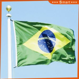 Custom Waterproof and Sunproof National Flag Brazil National Flag pictures & photos