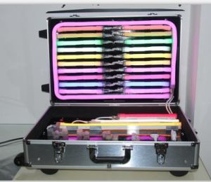 LED Demo Box for Neon Flex pictures & photos