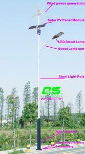 WPSRR-7701 3~15m Municipal Road Hot DIP Galvanized Steet Light Pole style pictures & photos