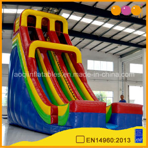 Inflatable High Slide with Double Lane (aq1114-2) pictures & photos