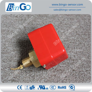 Brass Paddle Flow Switch with IP54 pictures & photos