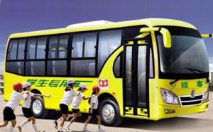 Dongfneg EQ6850zd3g School Bus/Children Bus pictures & photos