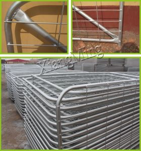 Galvanized Gates Farm Gates Metal Tube Gates for Sale pictures & photos