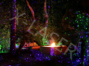 2016 Galax Outdoor Christmas Moving Firefly Garden Laser Light/Outdoor Decoration Landscape Light pictures & photos