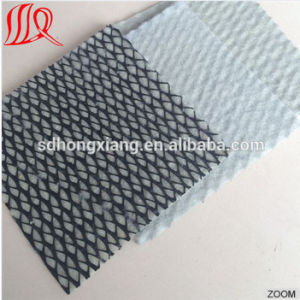 High Quality Composite Drainage HDPE Geonet pictures & photos