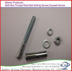 Hardware Fasteners Expansion Anchor Bolt Wedge Anchors pictures & photos