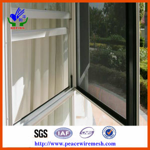 Stainless Steel Security Mesh for Window (R-AQW) pictures & photos
