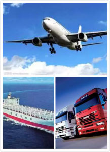 Professional Delivery Air Freight From China to La Paz pictures & photos