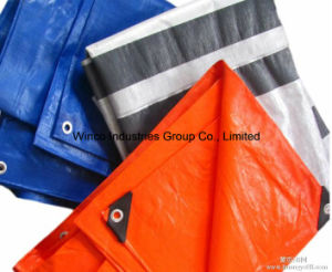PE Tarpaulin in Roll/PE Leno Sheet pictures & photos
