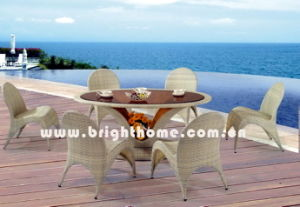 Rattan Furniture (Seagull Series) (BP-318) pictures & photos