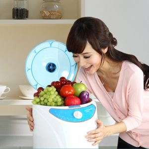 Household 9L Capacity AC 220V 500mg/H Ozone Generator Vegetable Ozone Washer pictures & photos