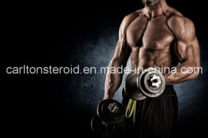Raw Steroids Testosterone Enanthate for Muscle Building and Bulking Cycle pictures & photos
