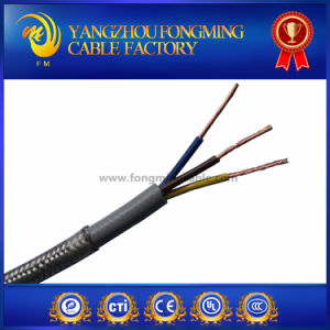 2 Layers PVC Coated Ss Shield 3 Cores Wires pictures & photos