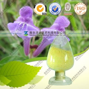 Wholesale 98% Baicalein Baikal Skullcap Root Extract pictures & photos