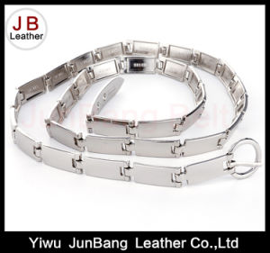 Metal Belt Gold-Tone with Leaf Shape Links Chain Belt pictures & photos
