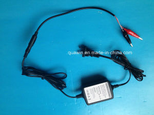 8.4V 1A EU Us Au Type Lithium Li-ion Battery Charger pictures & photos