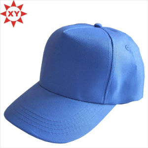 Fashion Cotton Custom Snpaback Hat/Cap Wholesale pictures & photos