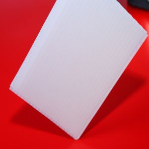 12mm Lexan Opal Solid Plastic PC Roofing Polycarbonate Sheet pictures & photos