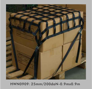 Polyester Webbing Net, Cargo Net pictures & photos