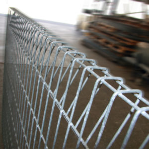 China Manufacturer Roll Top Fence/Roll Top Wire Fence pictures & photos