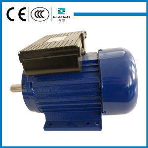 YL Series Double Capacitor Single Phase Motor pictures & photos