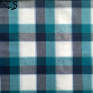 Cotton Poplin Woven Yarn Dyed Fabric Rls70-1po pictures & photos
