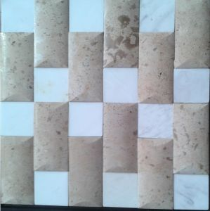 Century Design Nature Stone Mosaic for The Television Background Wall (FYSSL109) pictures & photos