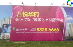 Digital Printing Outdoor Vinyl Advertising Banner for Sale pictures & photos